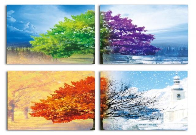 Hội thoại tiếng Hàn chủ đề các mùa