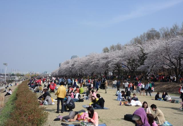 Cùng nhau học tiếng Hàn thông dụng để thỏa sức du lịch xứ Hàn