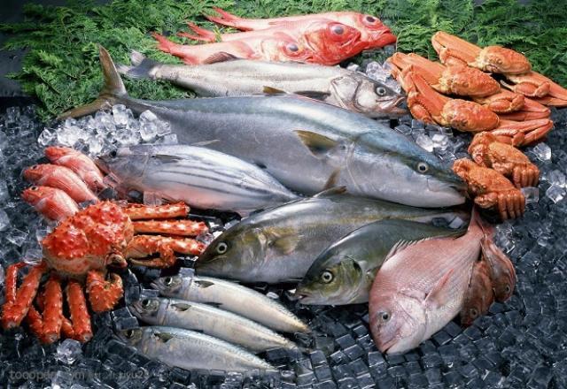 Từ vựng tiếng Hàn chuyên ngành nhà máy hải sản